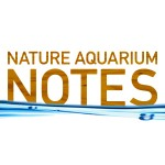 NATURE AQUARIUM NOTES