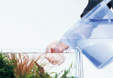 Ideal to conduct water change everyday