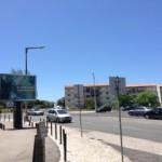 リスボン水族館ポスター画像