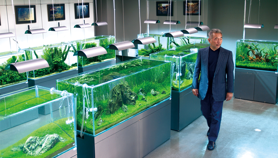 Under The Concept Of Simplicity, The Entirely Glass Made Aquarium U201cCube  Gardenu201d Was Born Free From Frame Which Had Been Deemed Essential For  Aquarium Tanks.