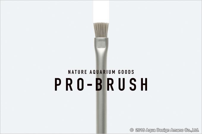 Pro-Brush