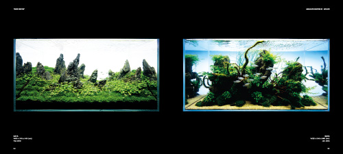"Takashi Amano Photography Book ""THE ART OF NATURE AQUARIUM""  P132-133"