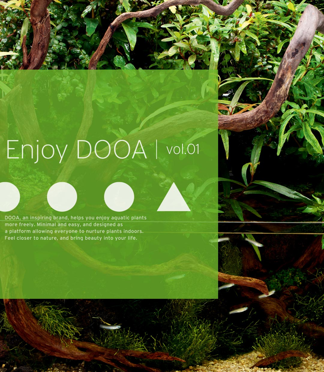 Enjoy DOOA vol.01
