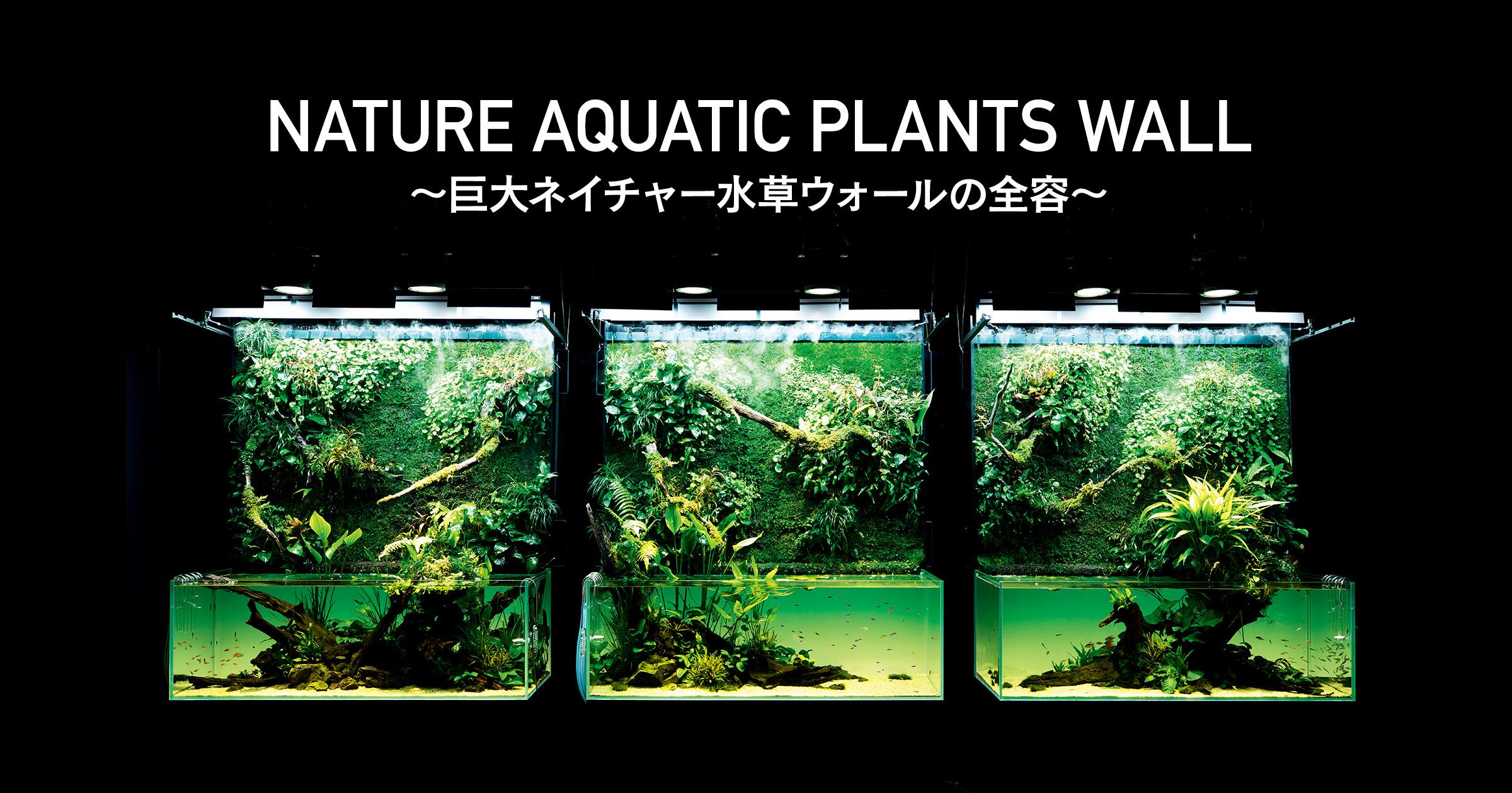 「天野 尚NATURE AQUARIUM 展」〜巨大ネイチャー水草ウォールの全容〜