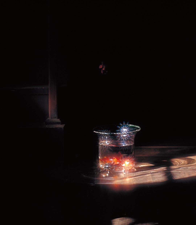 Amano考 -ガラスの中の大自然- 第1回「身近な自然」