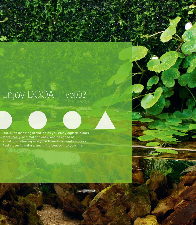 Enjoy DOOA vol.03 黄虎石を用いたネオグラス テラの新感覚レイアウト