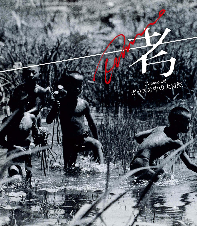 Amano考 -ガラスの中の大自然- 第4回「短靴と水草」