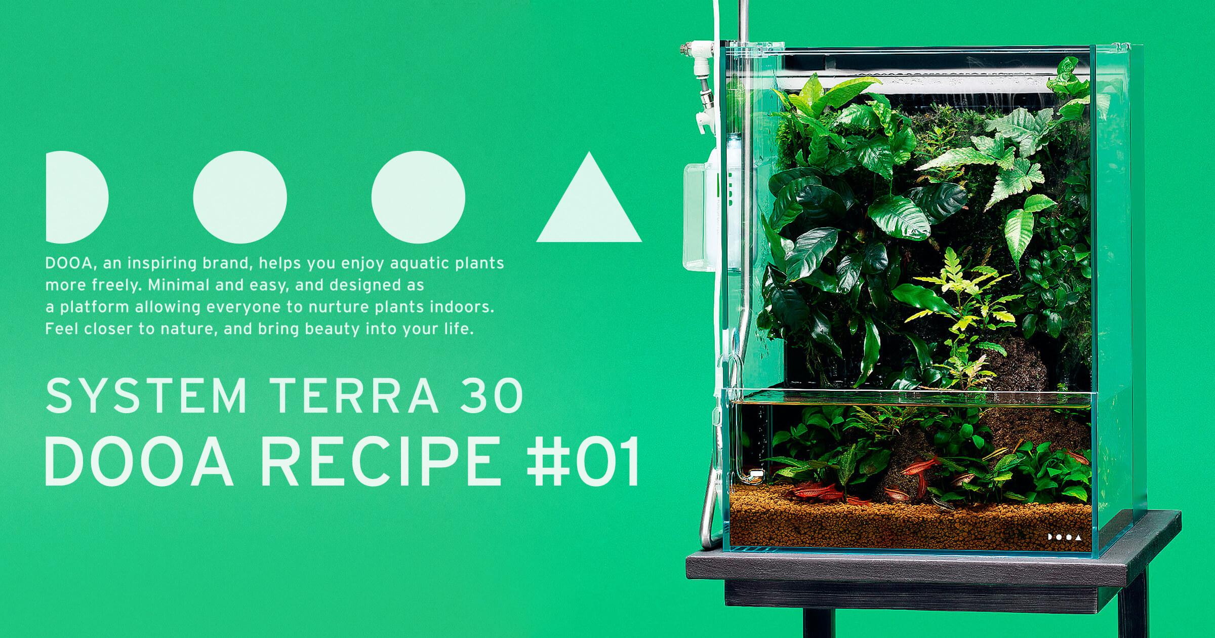 【DOOAレシピ】#01「熱帯雨林の水辺」