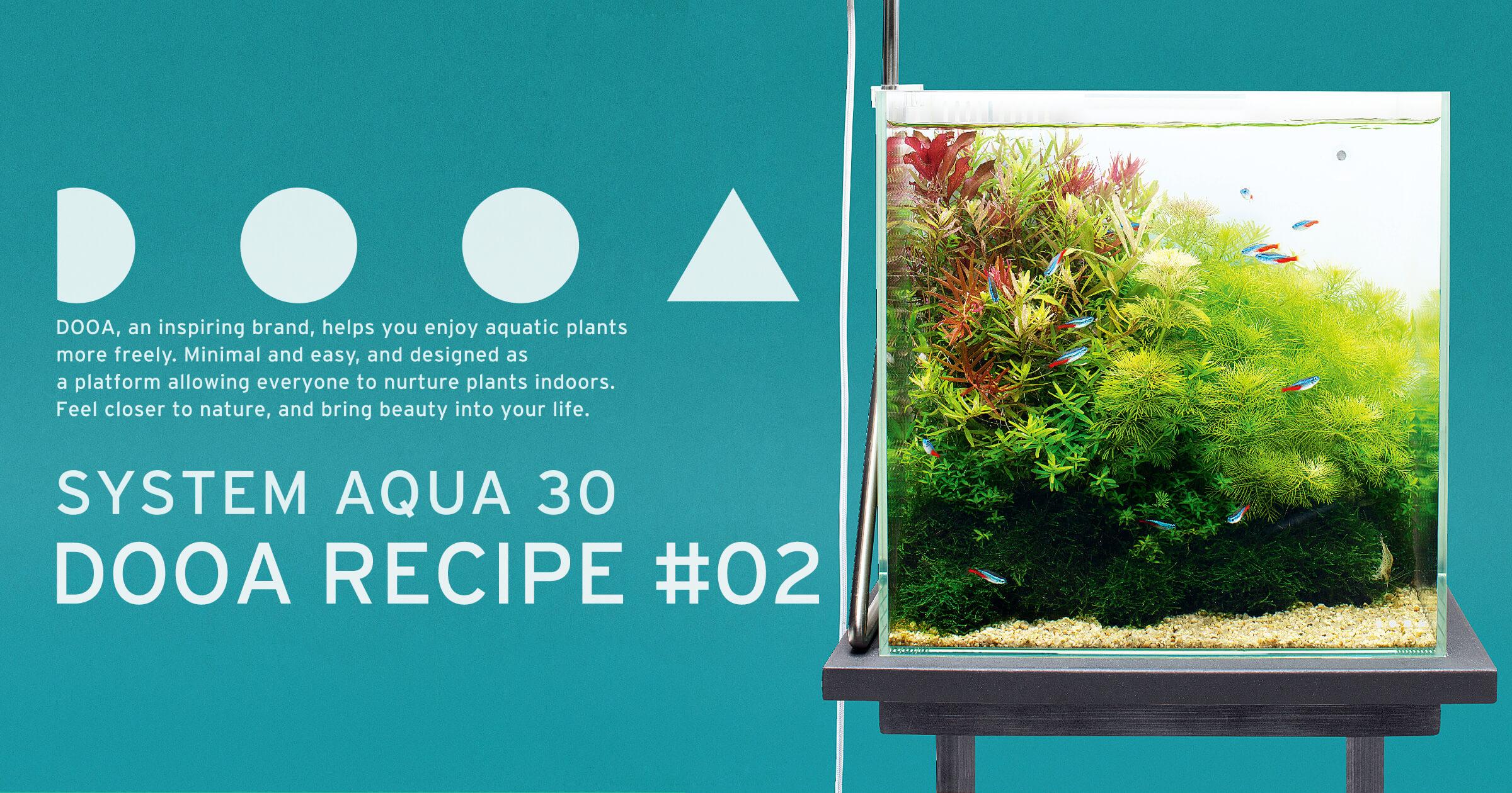 【DOOAレシピ】#02「水草の安らぎと癒し」