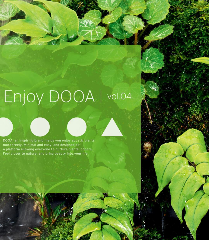 Enjoy DOOA vol.04 日本の山野草とメダカで楽しむ和の涼感