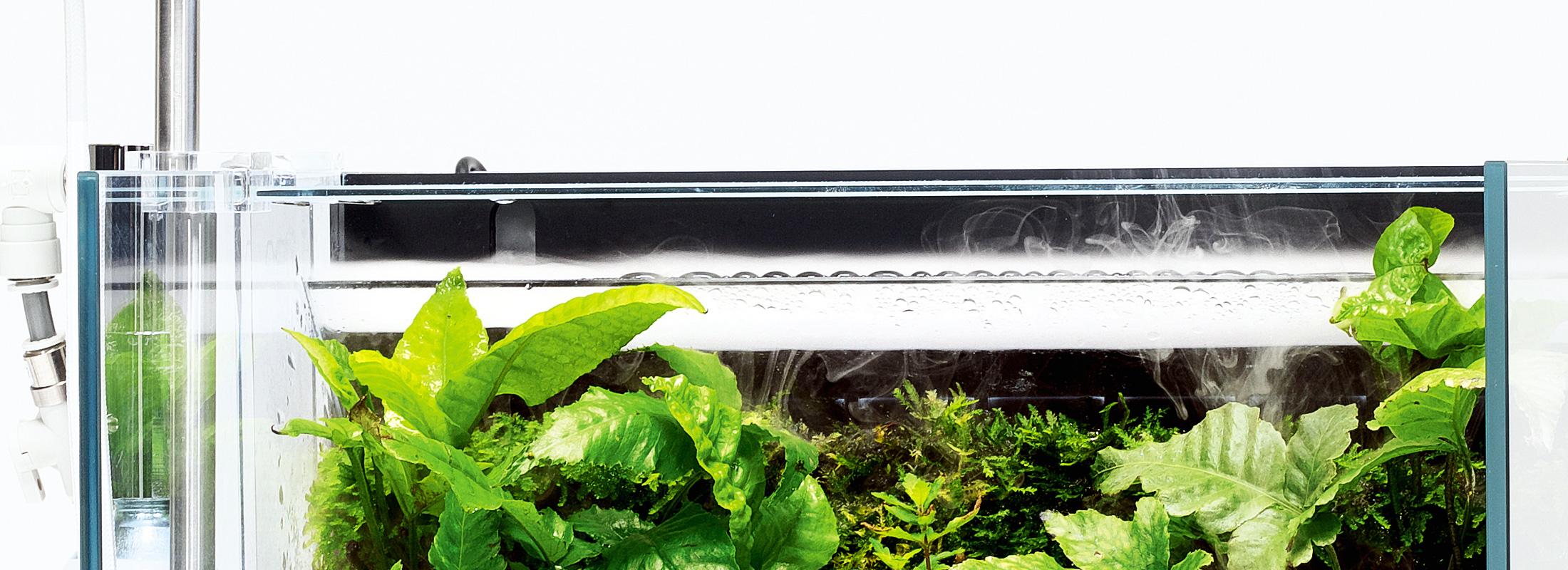 常緑の雲霧林へ、高い演出性と実用性を兼ね備えた「ミストフロー」が熱帯の世界へといざなう