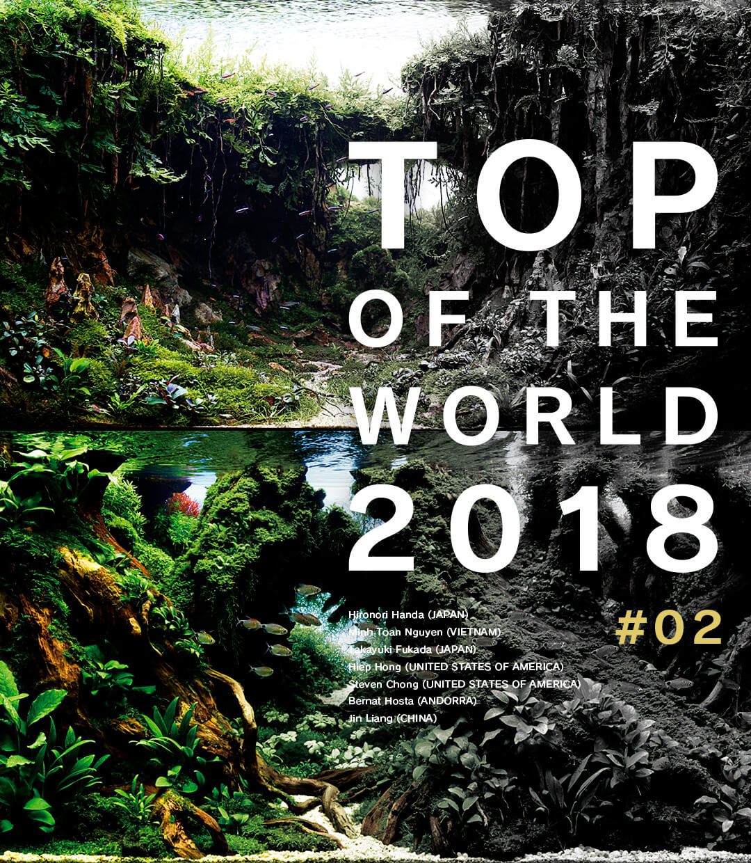 TOP OF THE WORLD 2018 #02