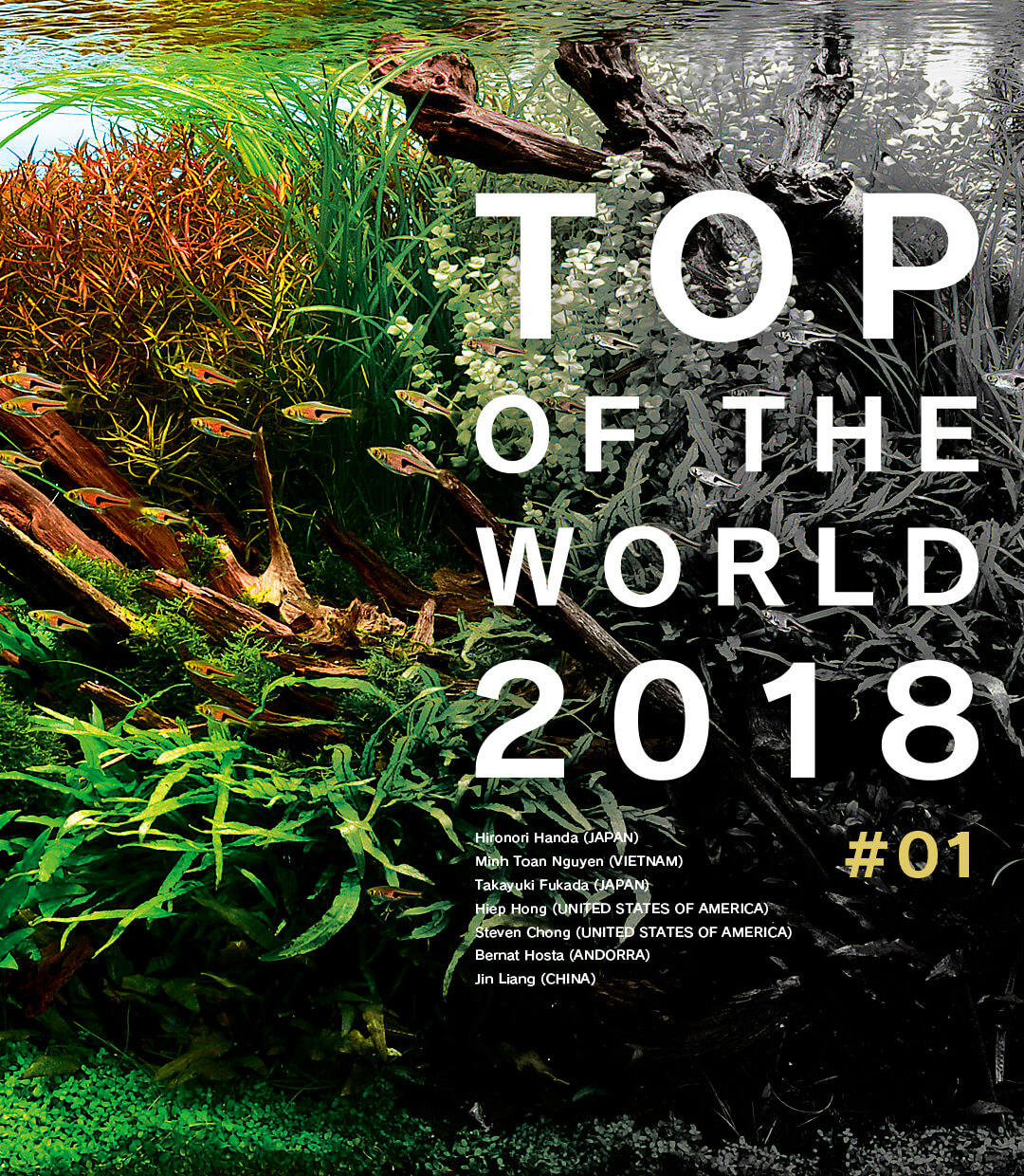 TOP OF THE WORLD 2018 #01
