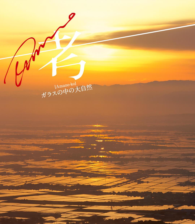 Amano考 -ガラスの中の大自然- 第6回「大雨の後の手づかみ漁」