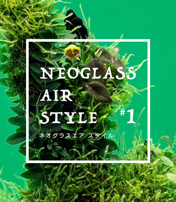 ネオグラスエア スタイル #01「小型着生ランのテラリウムスタイル」