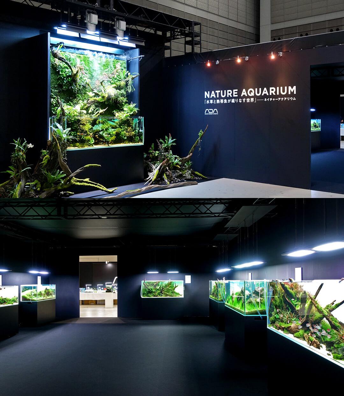 本日より開催「とうほく蘭展」に現れたネイチャーアクアリウム特別展示