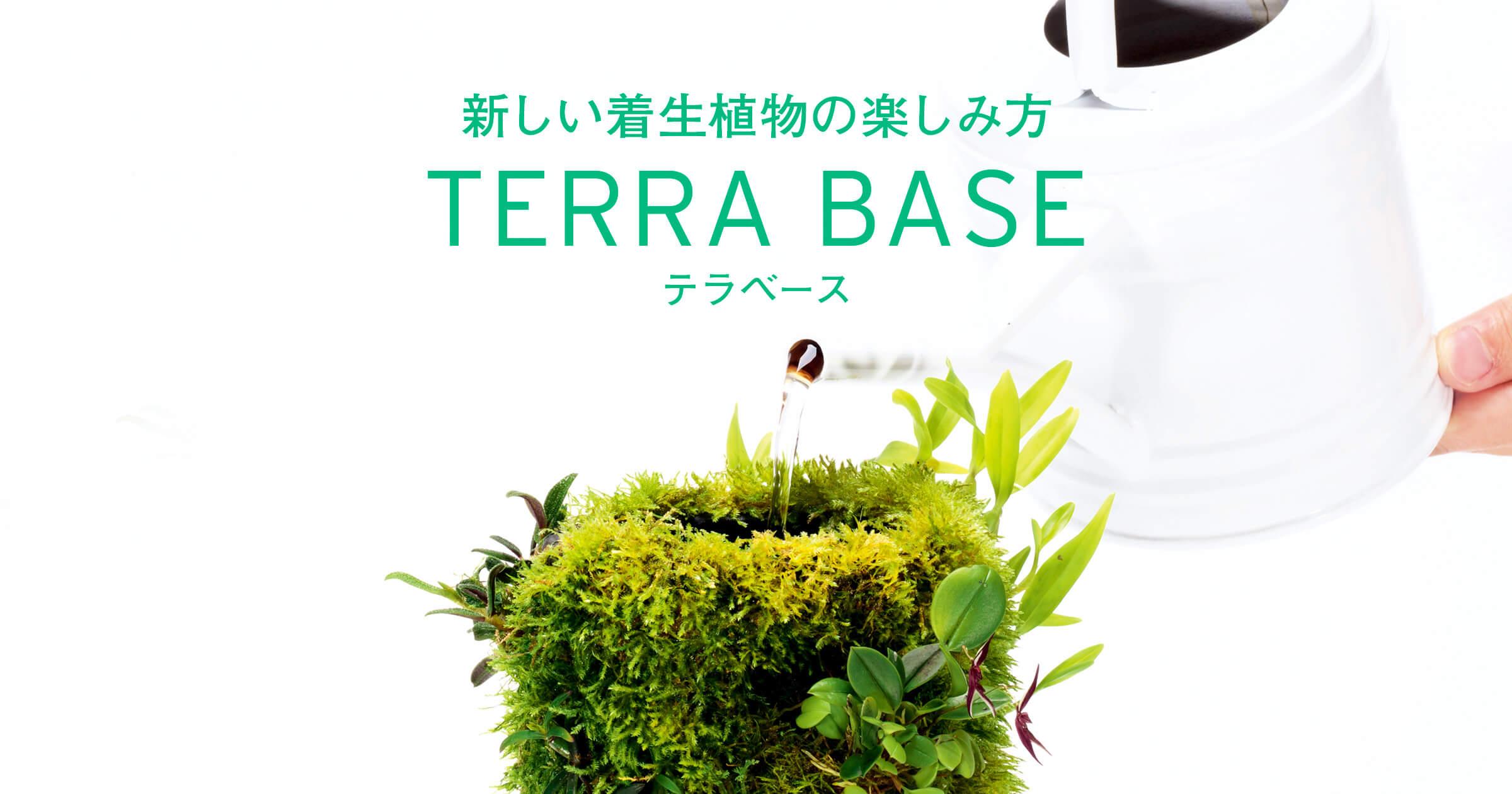 新しい着生植物の楽しみ方「テラベース」