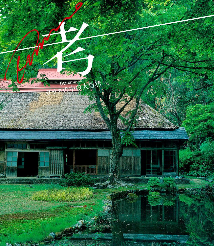 Amano考 —ガラスの中の大自然— 第9回「藤波邸の庭」