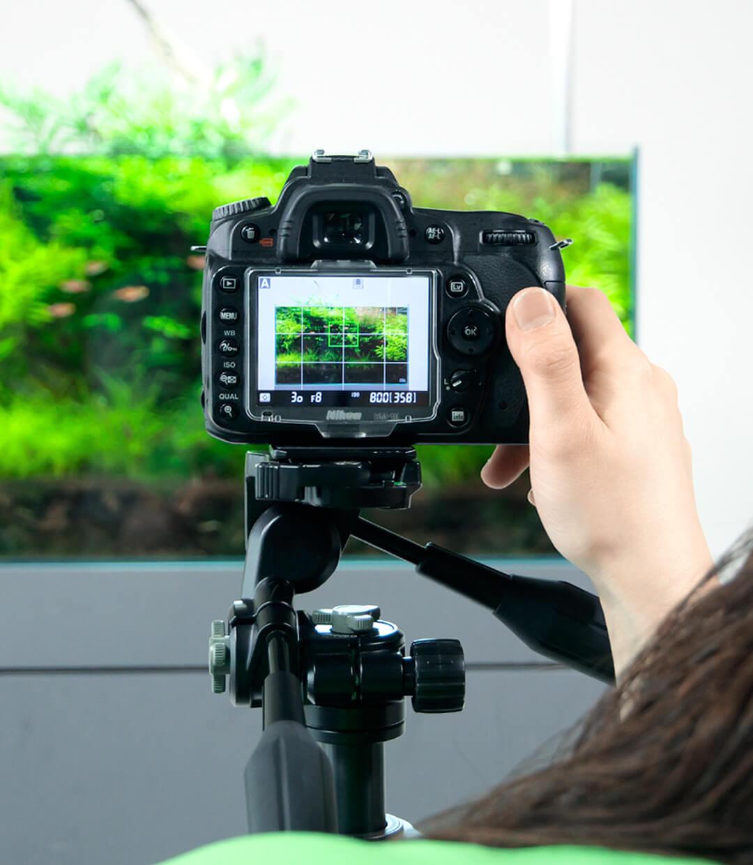 まだ間に合う!コンテスト応募作品の撮影テクニックを学ぶ