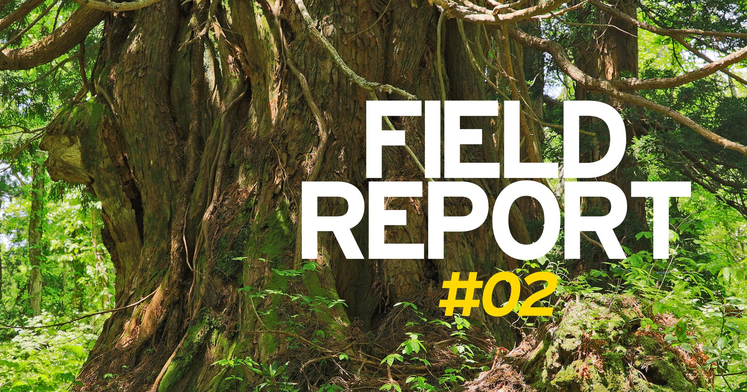 FIELD REPORT -金剛杉の息吹を感じる会-