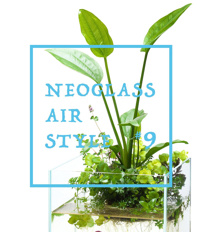 ネオグラス エア スタイル #9 「真夏のエキノドルス」