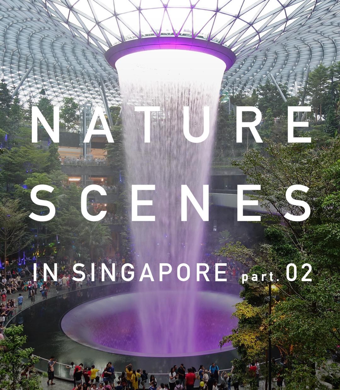 緑化都市シンガポールの水草事情 -番外編-