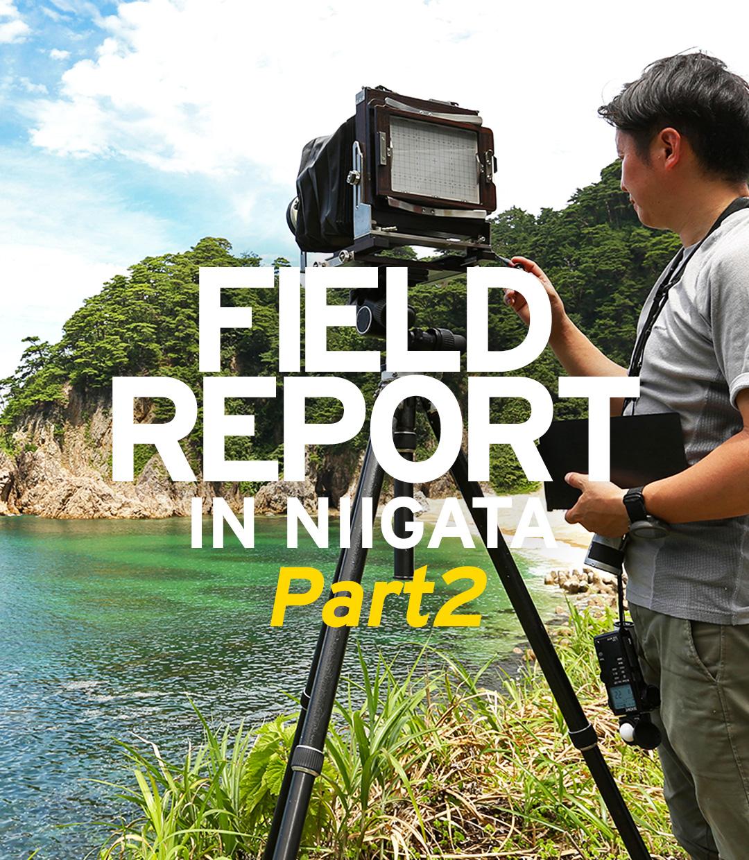 FIELD REPORT -自然から学ぶ石組のヒント Part2-