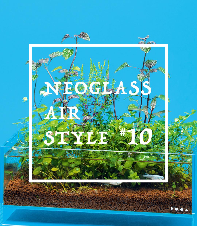 ネオグラス エア スタイル #10 「493㎠の 小さな水辺の保全」