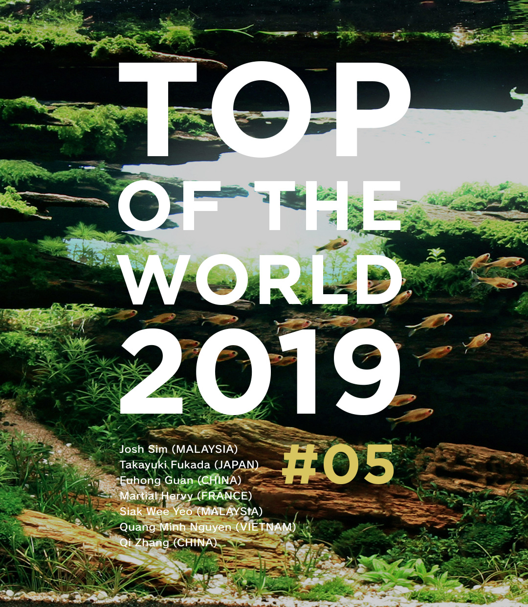 TOP OF THE WORLD 2019 #05
