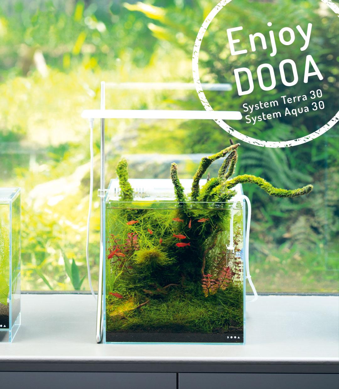 Enjoy DOOA 「水草やジャングルプランツを手軽に楽しむ」