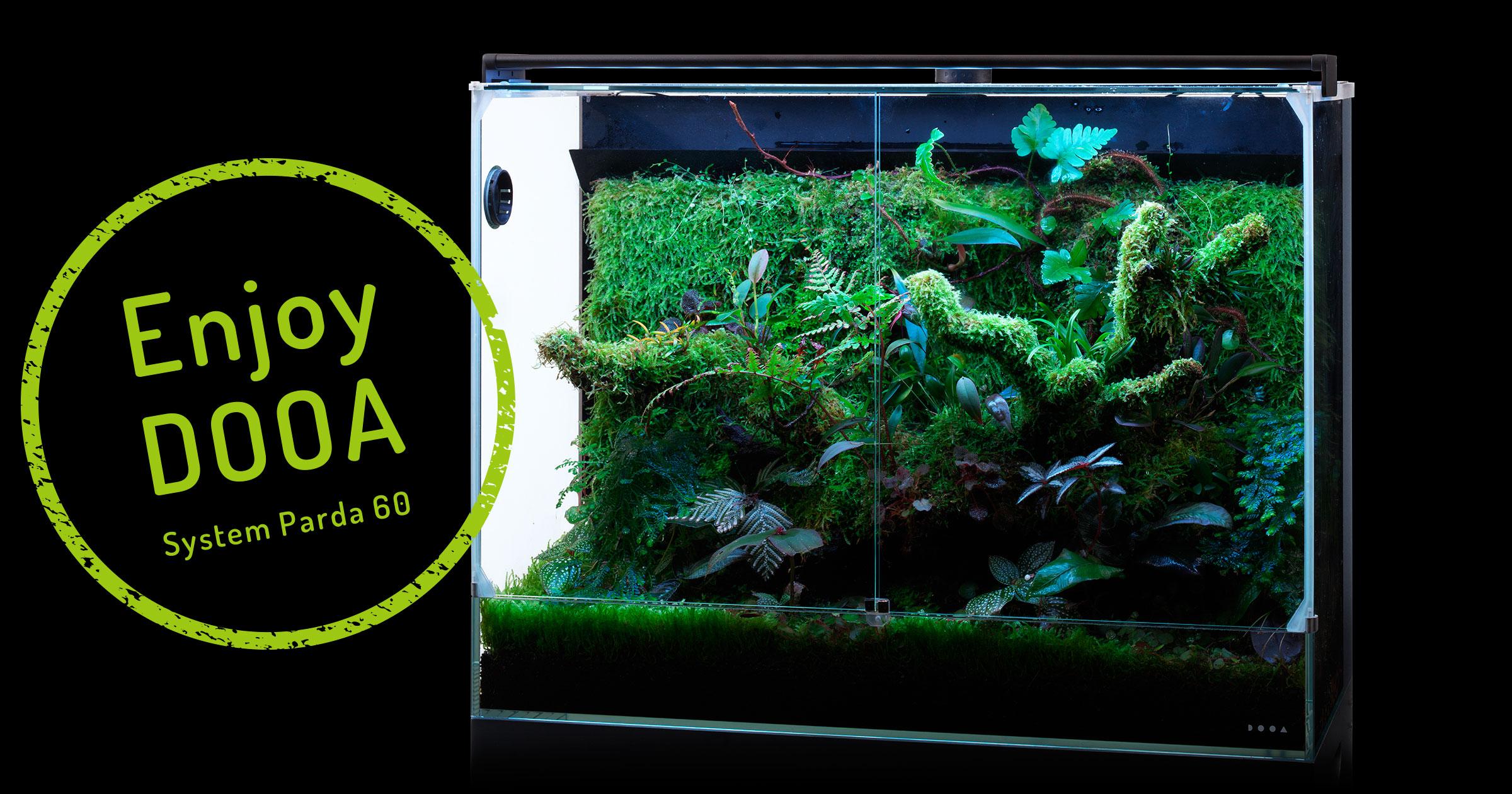 Enjoy DOOA 「システムパルダ 60で熱帯の雲霧林を再現」