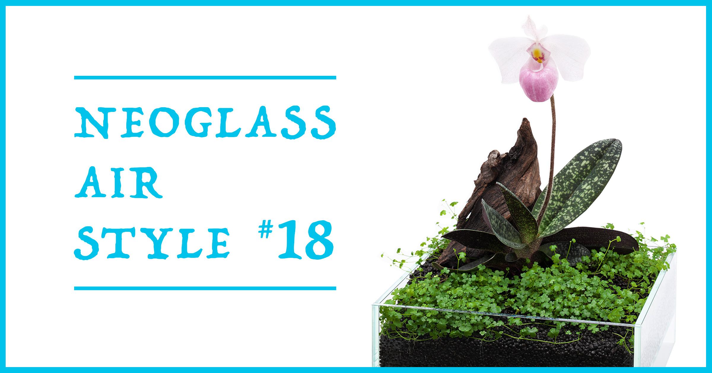 ネオグラス エア スタイル 「水草の絨毯と見返り美人」