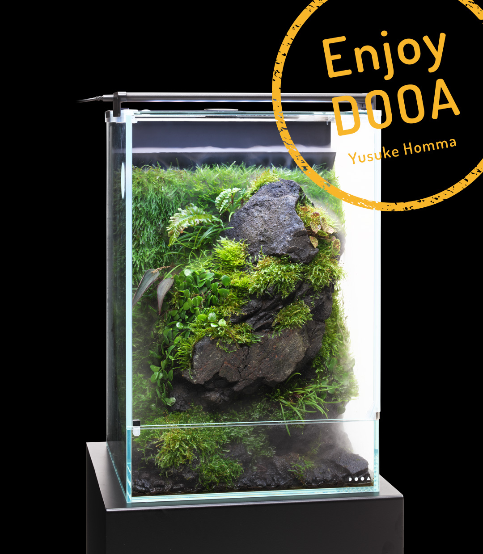 "Enjoy DOOA 「高湿度を好む苔や植物 システムパルダで ""石と苔の涼""を楽しむ」"