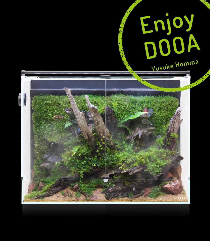 Enjoy DOOA 「古い流木と苔による 佗び寂びの表現 癒しのパルダリウム」