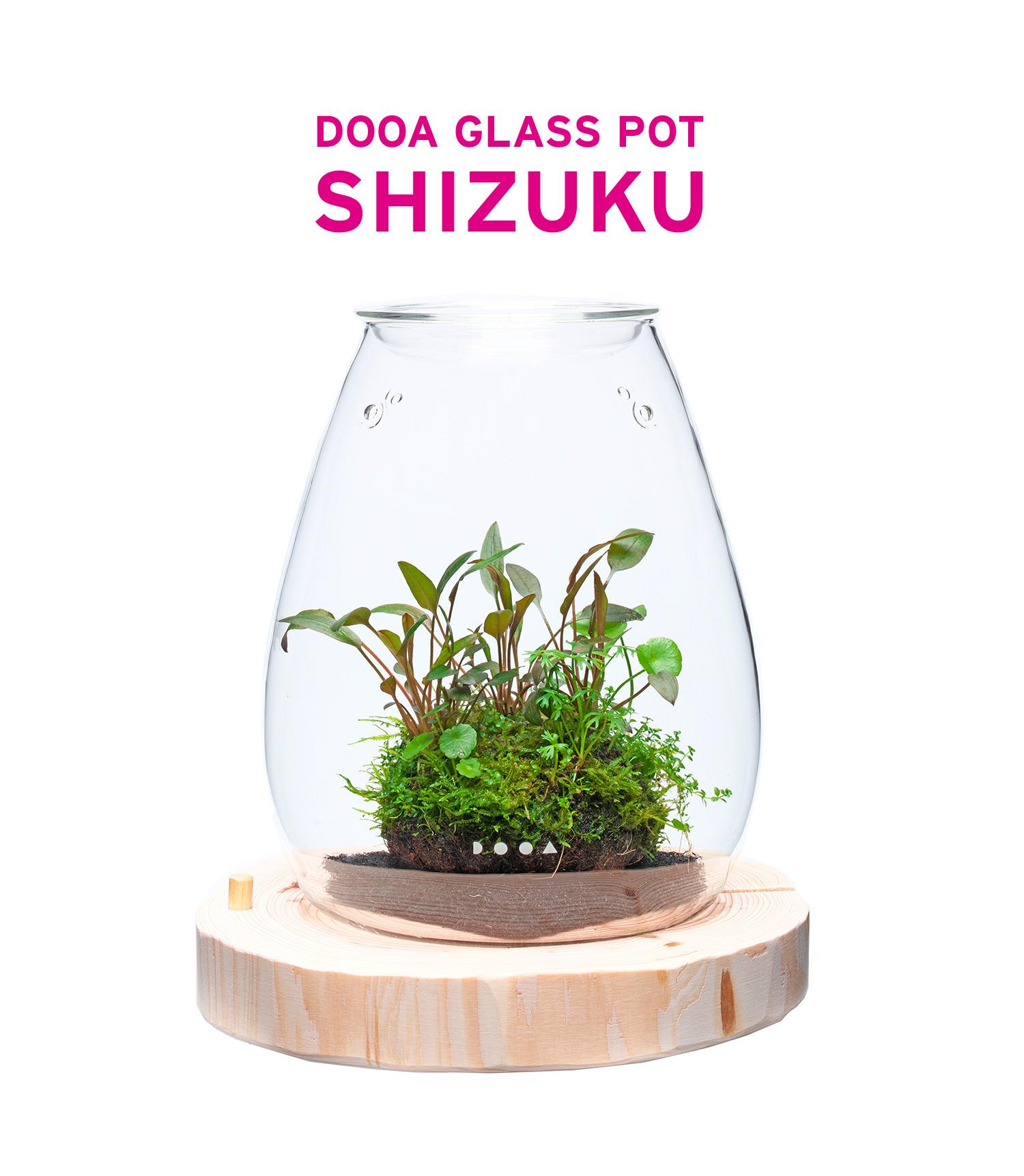 DOOA ガラスポット SHIZUKUってなに?