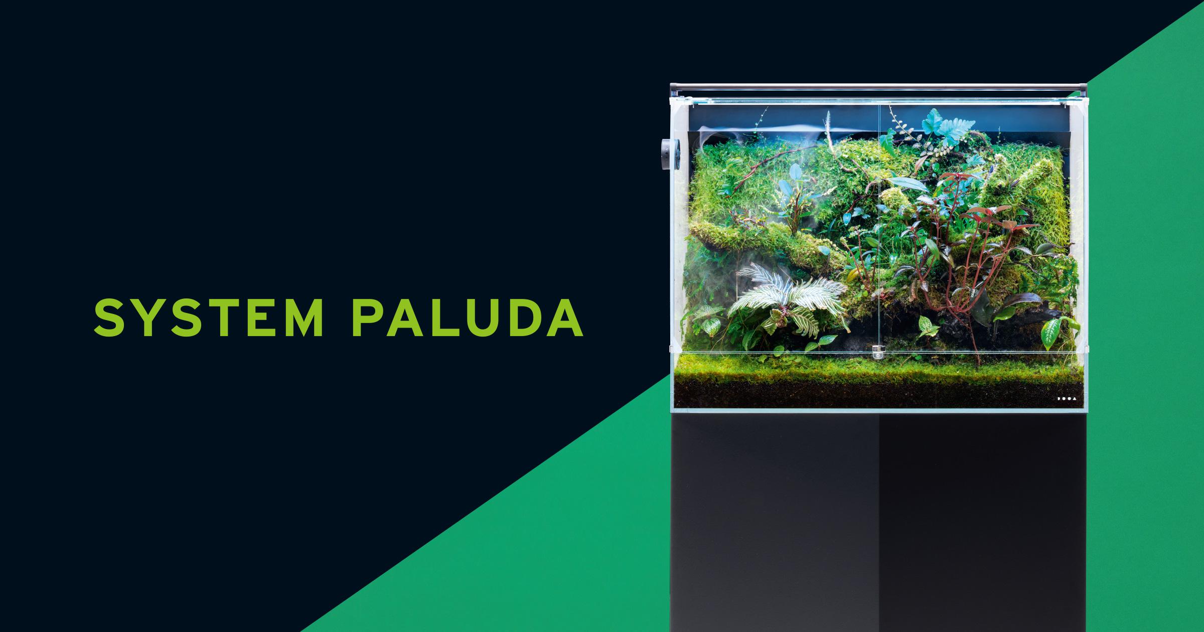SYSTEM PALUDA 60「青い光と霧で 熱帯雲霧林の環境を再現」