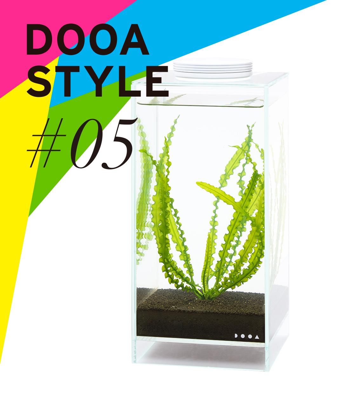 DOOA STYLE #5 アフリカ独特の 波打ち水草。
