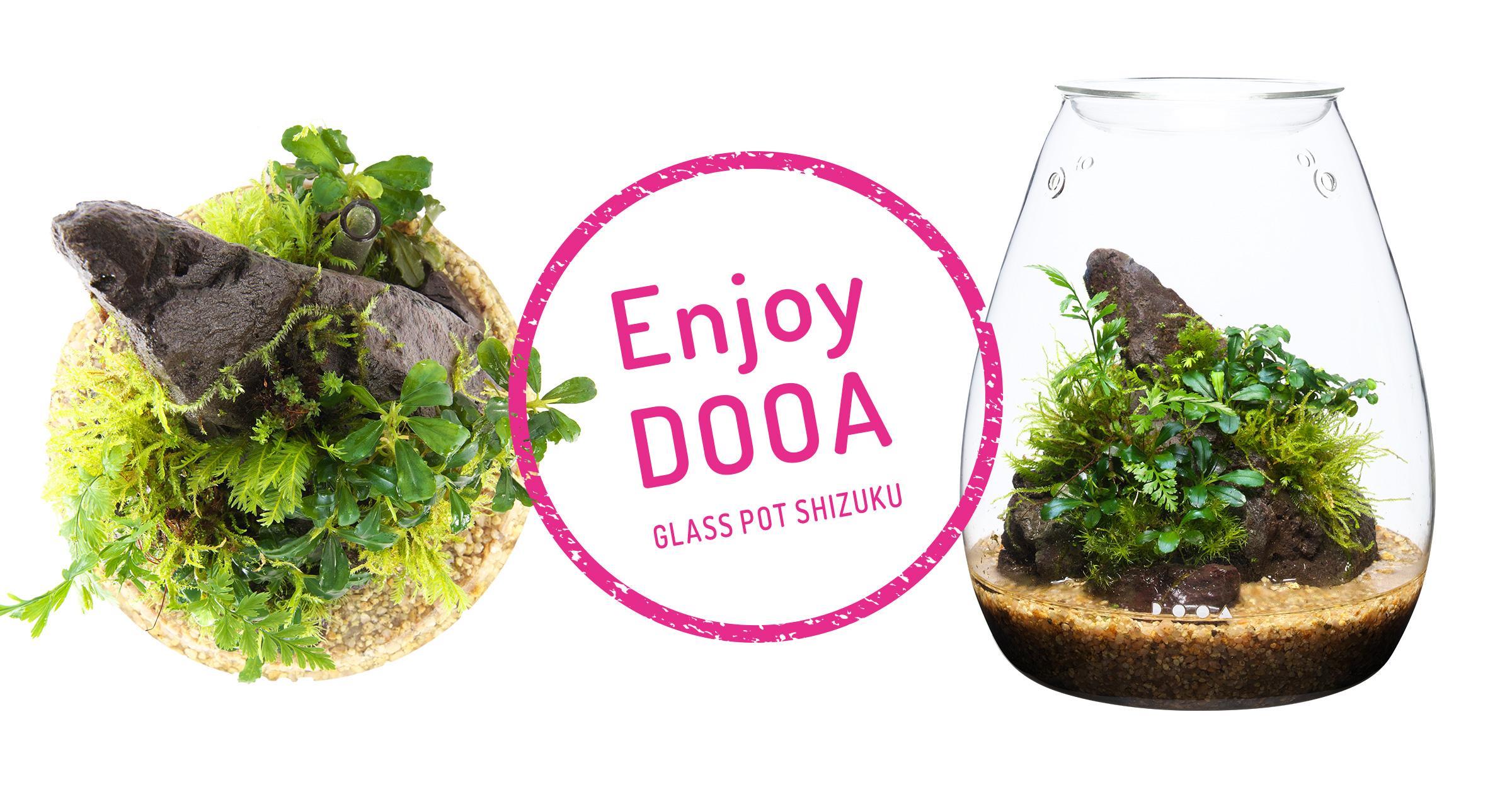 Enjoy DOOA「GLASS POT SHIZUKU」