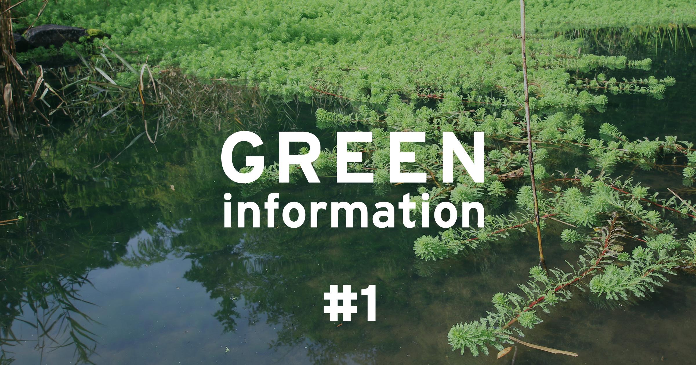GREEN information #1 「熱帯の水草も越冬します」