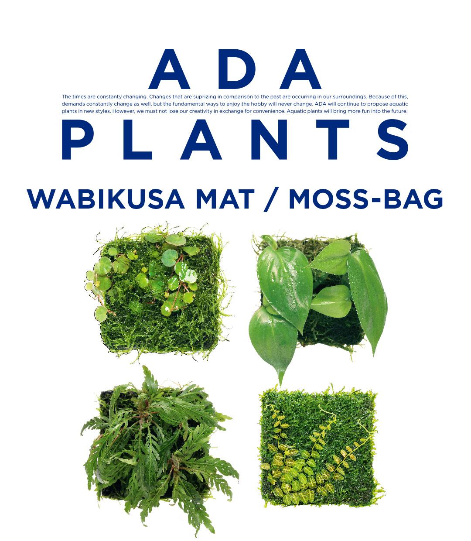 ADA PLANTS「佗び草マット/モスバッグ 11種」