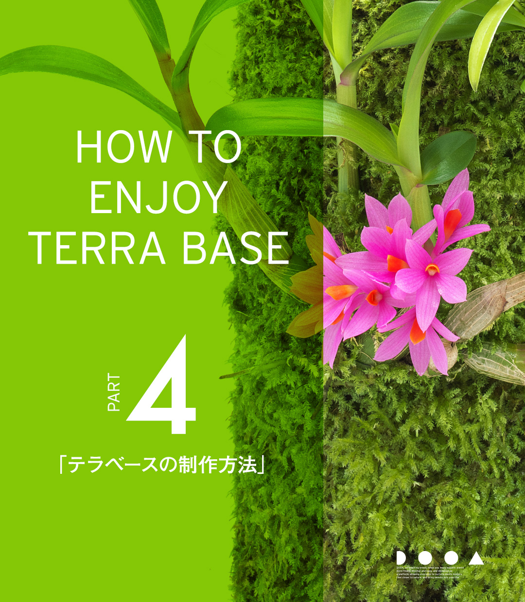 HOW TO ENJOY TERRA BASE PART4「テラベースの制作方法」
