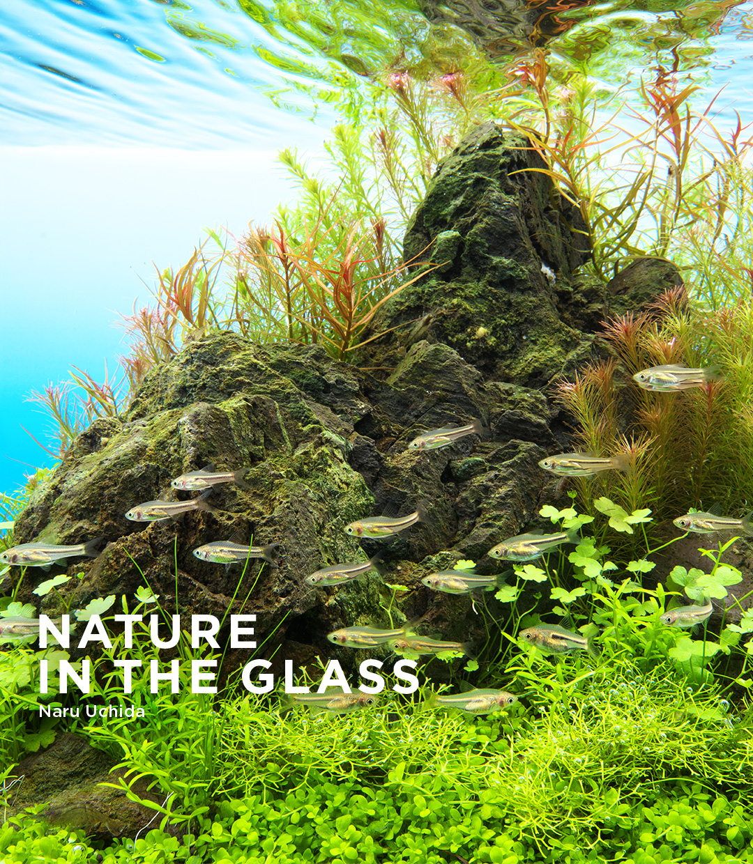 NATURE  IN THE GLASS 「守石」