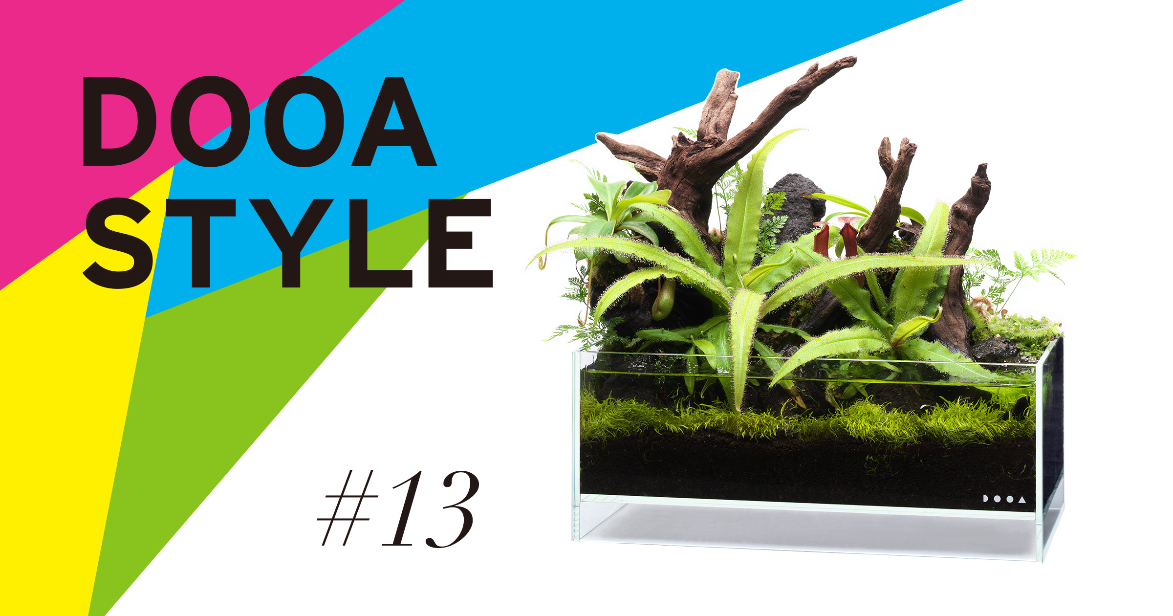 DOOA STYLE #13 食虫植物をオープンスタイルで。
