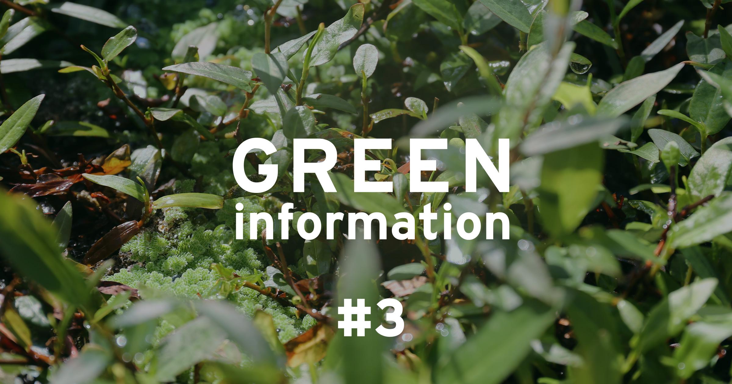 GREEN information #3「植物による環境影響 ~ウキクサの特性~」