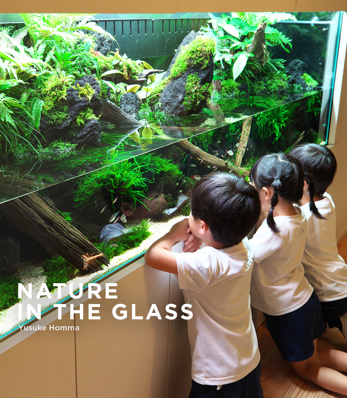NATURE IN THE GLASS 「水辺のふしぎな世界」