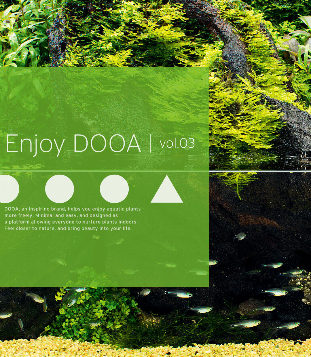 Enjoy DOOA vol.03