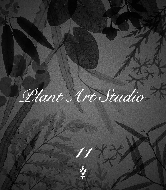 Plant Art Studio #11
