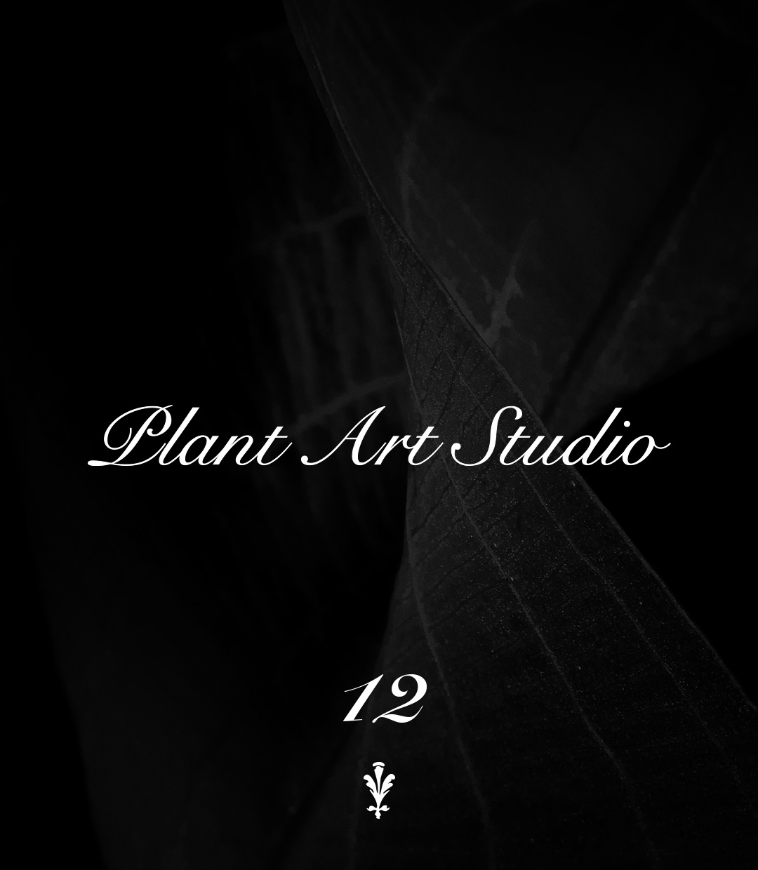 Plant Art Studio #12