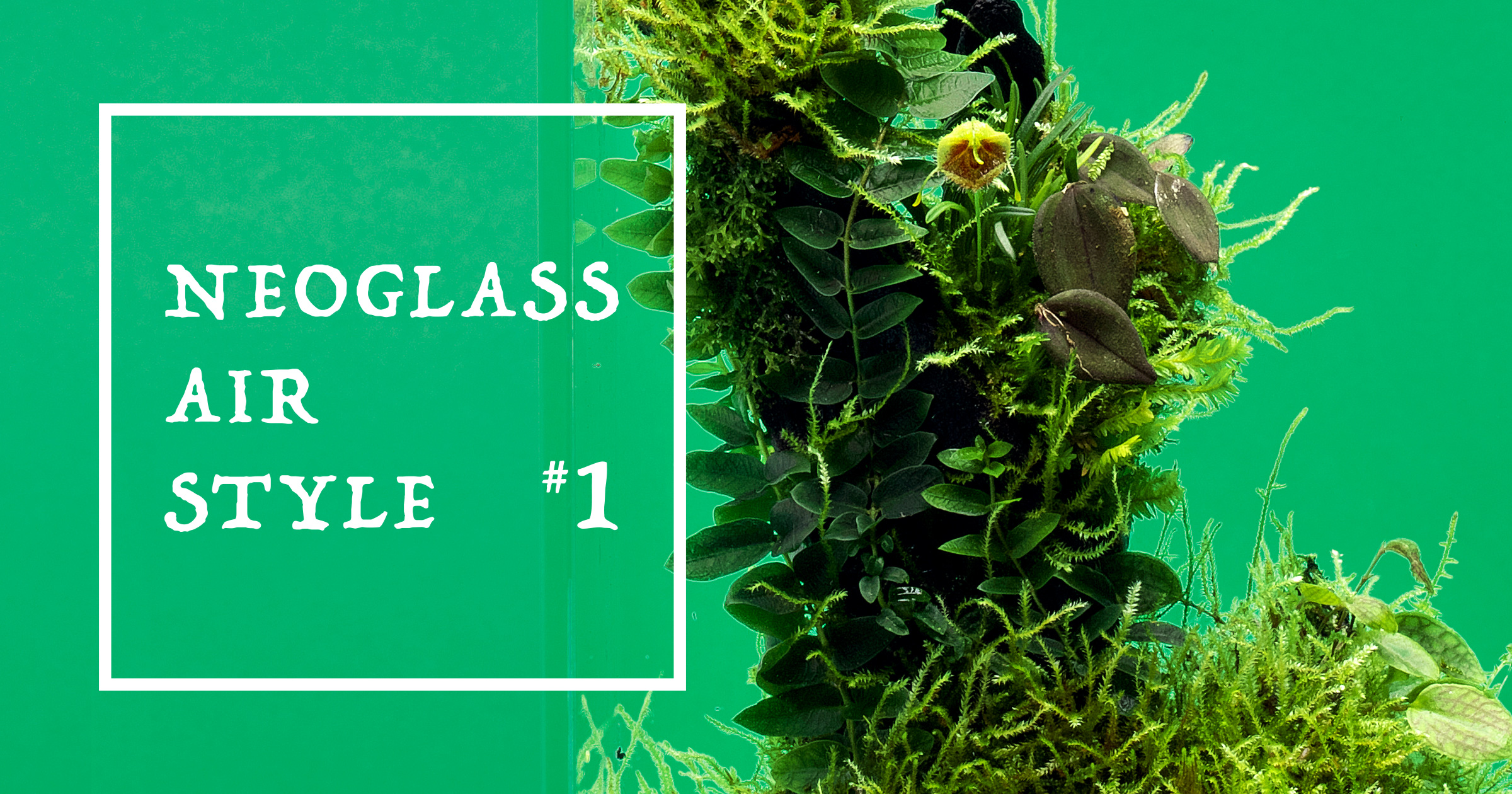 NEOGLASS AIR STYLE #1