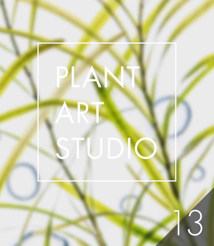 Plant Art Studio #13